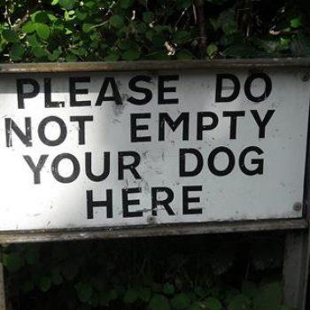 Bad-Translation